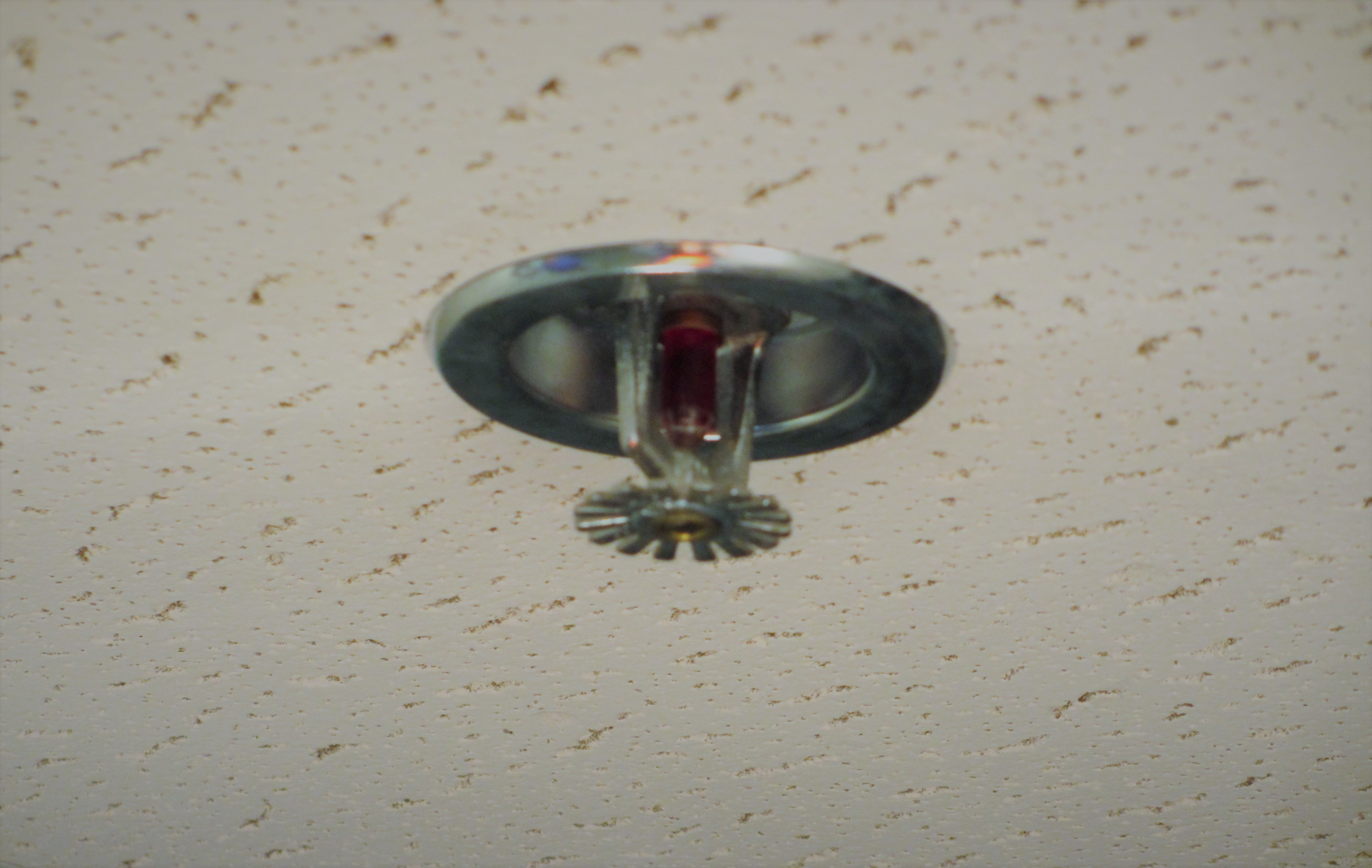 What s the difference between fire sprinkler and